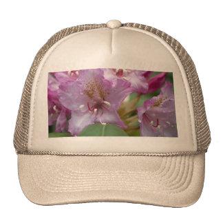 Rododendro rosado gorros