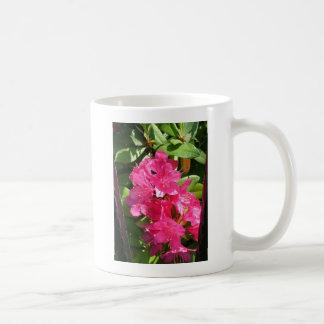 rododendro rosado taza básica blanca