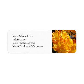 Rododendros anaranjados de las etiquetas de etiqueta de remitente