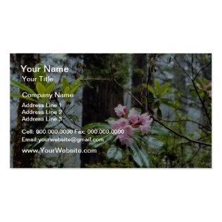 Rododendros occidentales, señora Bird Johnson Grov Plantillas De Tarjetas Personales