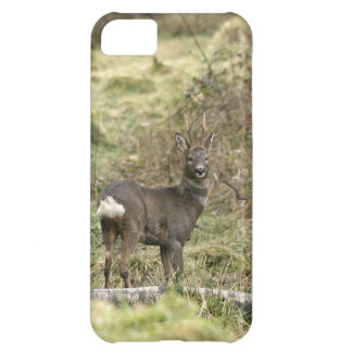 Roe Deer Buck iPhone 5 Case-Mate Barely There iPhone 5C Case