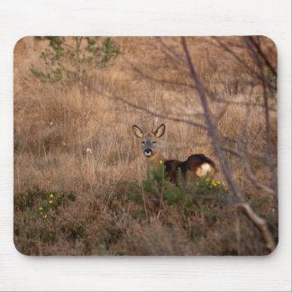 Roe Deer Mouse Pad