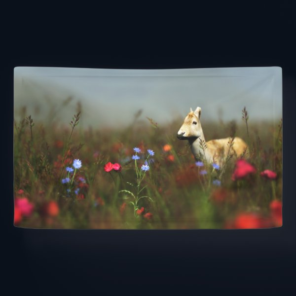 Roe in a Meadow Banner