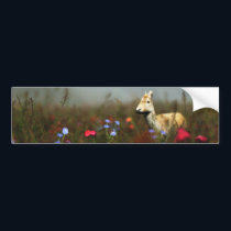 Roe in a Meadow Bumper Sticker