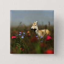 Roe in a Meadow Button