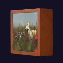 Roe in a Meadow Desk Organizer