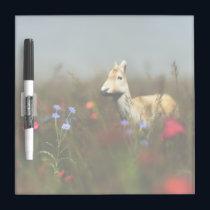 Roe in a Meadow Dry Erase Board