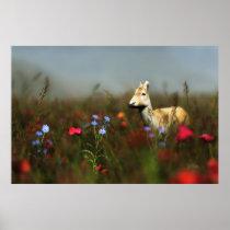 Roe in a Meadow Print