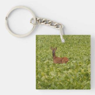 Roebuck Keychain