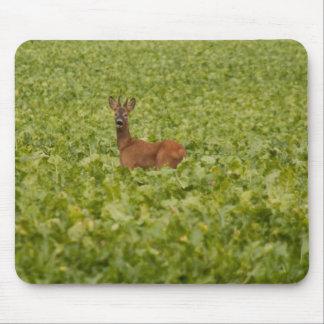 Roebuck Mouse Pad