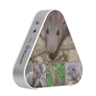 roedores lindos altavoz