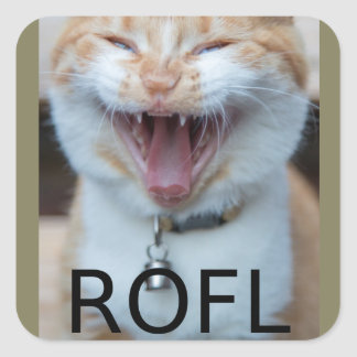 ROFL Laughing Kitty Cat Square Sticker
