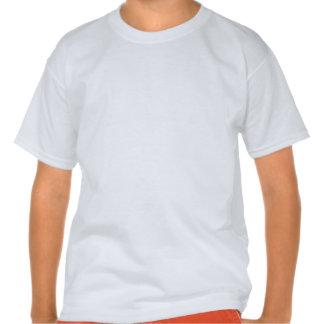 Rogelio alegre en rayas brillantes del arco iris camiseta