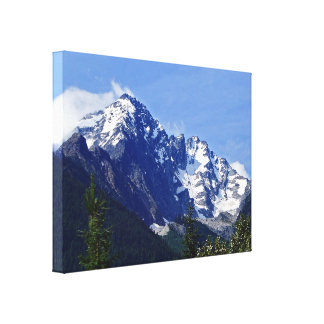 Roger's Pass Summit Stretched Canvas Print