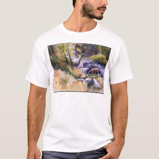 Rogue River Afternoon T-Shirt
