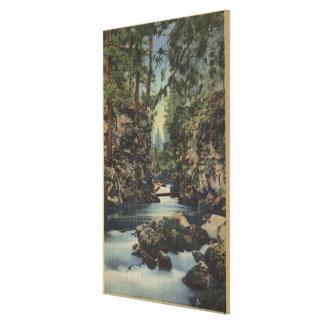 Rogue River, Oregon - Upper Gorge View of River Canvas Print
