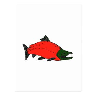Rojo - arte de los salmones de Sockeye Tarjetas Postales