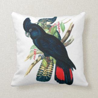 Rojo atado, Cockatoos. negros (de Banksian) Almohadas