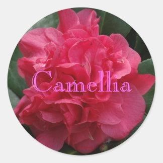 Rojo atractivo de la camelia rizado etiquetas redondas