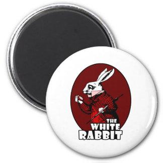 Rojo blanco del logotipo del conejo imanes