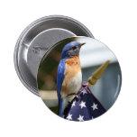 Rojo, blanco y Bluebird Pin