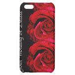 Rojo color de rosa de la flor