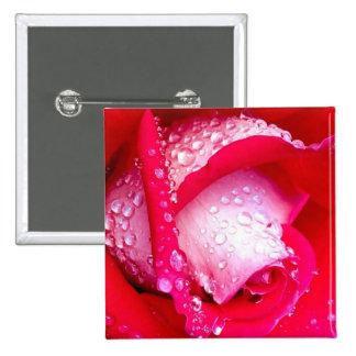 Rojo/color de rosa Rocío-Besada rosado Pin Cuadrada 5 Cm