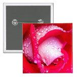 Rojo/color de rosa Rocío-Besada rosado Pins