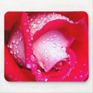 Rojo/color de rosa Rocío-Besada rosado Mouse Pads