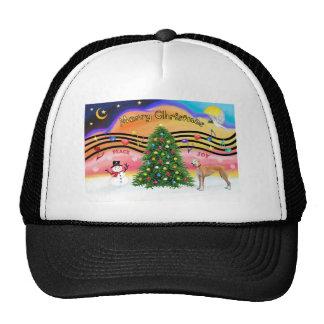 Rojo de la música 2 del navidad - galgo - gorras