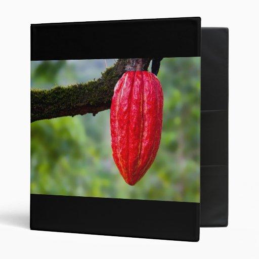 rojo de la vaina del cacao
