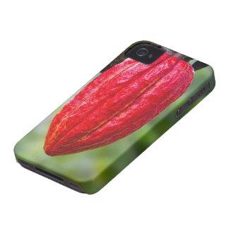 rojo de la vaina del cacao Case-Mate iPhone 4 fundas