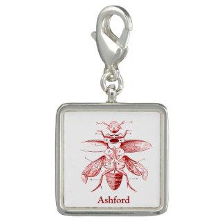 Rojo de los escarabajos el | de la imagen el | del dije
