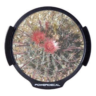 Rojo del anzuelo del cactus de barril decal LED para ventana