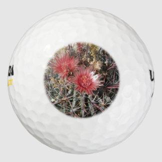 Rojo del anzuelo del cactus de barril pack de pelotas de golf