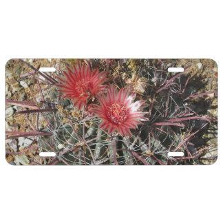 Rojo del anzuelo del cactus de barril placa de matrícula
