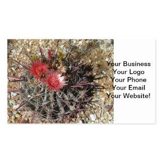 Rojo del anzuelo del cactus de barril tarjetas de visita