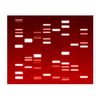 Rojo del código genético de la DNA Postales