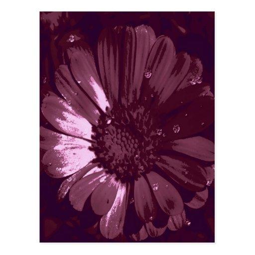 Rojo del flor tarjeta postal
