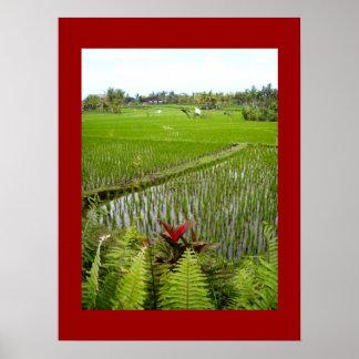 """Rojo del poster (18"""" x 24"""") el Ubud floreciente Ba"""