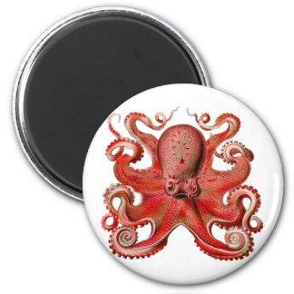 Rojo del pulpo de Haeckel Imán Redondo 5 Cm