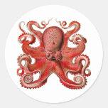 Rojo del pulpo de Haeckel Pegatinas