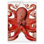 Rojo del pulpo de Haeckel Tarjeta De Felicitación