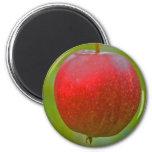Rojo del verano de Apple Imán Para Frigorifico