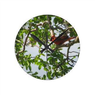 """""""Rojo"""" el Reloj-BR cardinal de la pared, Luisiana Reloj Redondo Mediano"""