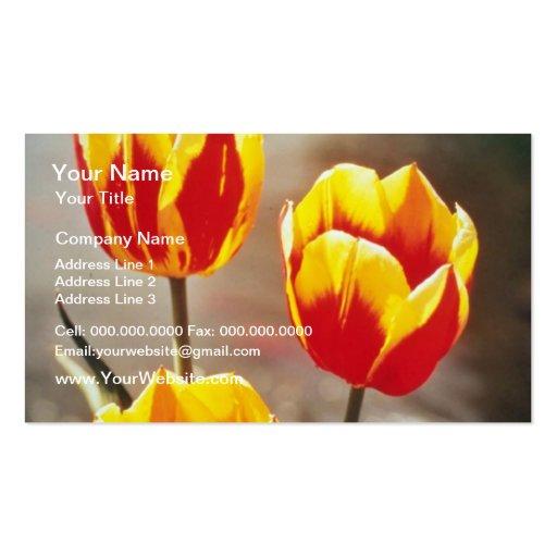 Rojo escoja los tulipanes tempranos, flores de Kei Tarjetas De Visita