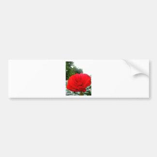 Rojo Etiqueta De Parachoque