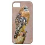 Rojo-Llevó a hombros el halcón iPhone 5 Protector