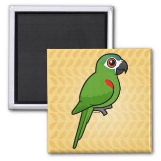 Rojo-llevó a hombros el Macaw Imán Cuadrado