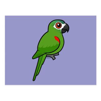 Rojo-llevó a hombros el Macaw Postal